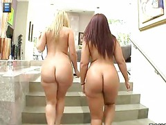 Two nice big ass girls [4 movies]