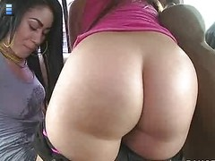 Summer Bailey and Vanessa Lee. Both of these girls have big tits and the obvious giant asses. [4 movies]